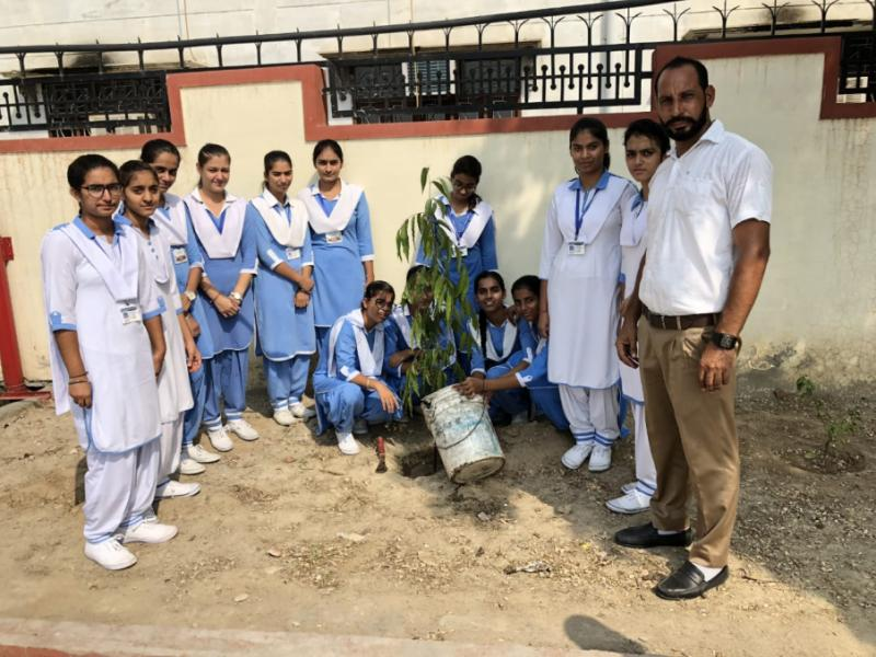 Green School Drive of Dasmesh Public School Faridkot